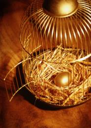 Nest Egg Cage