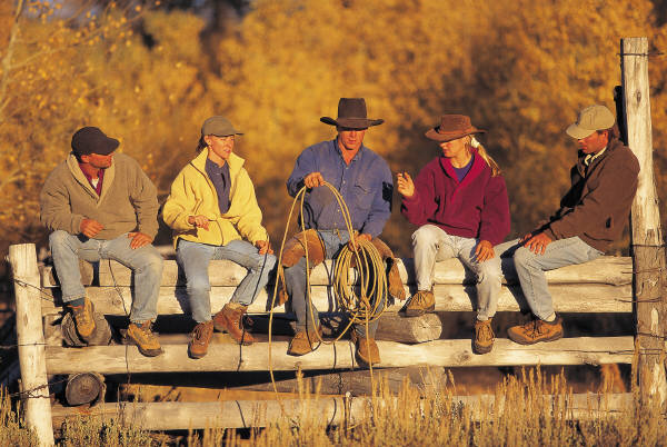 fence-sitting-cowboys.jpg (600×402)