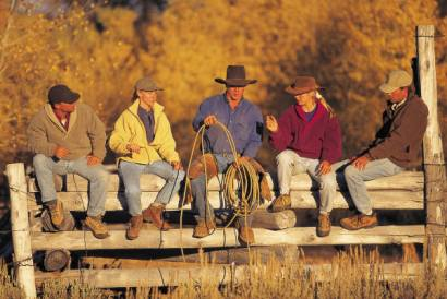 Fence Sitting Cowboys