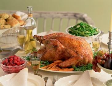 turkey wade
