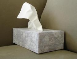 tissue-box-1420439