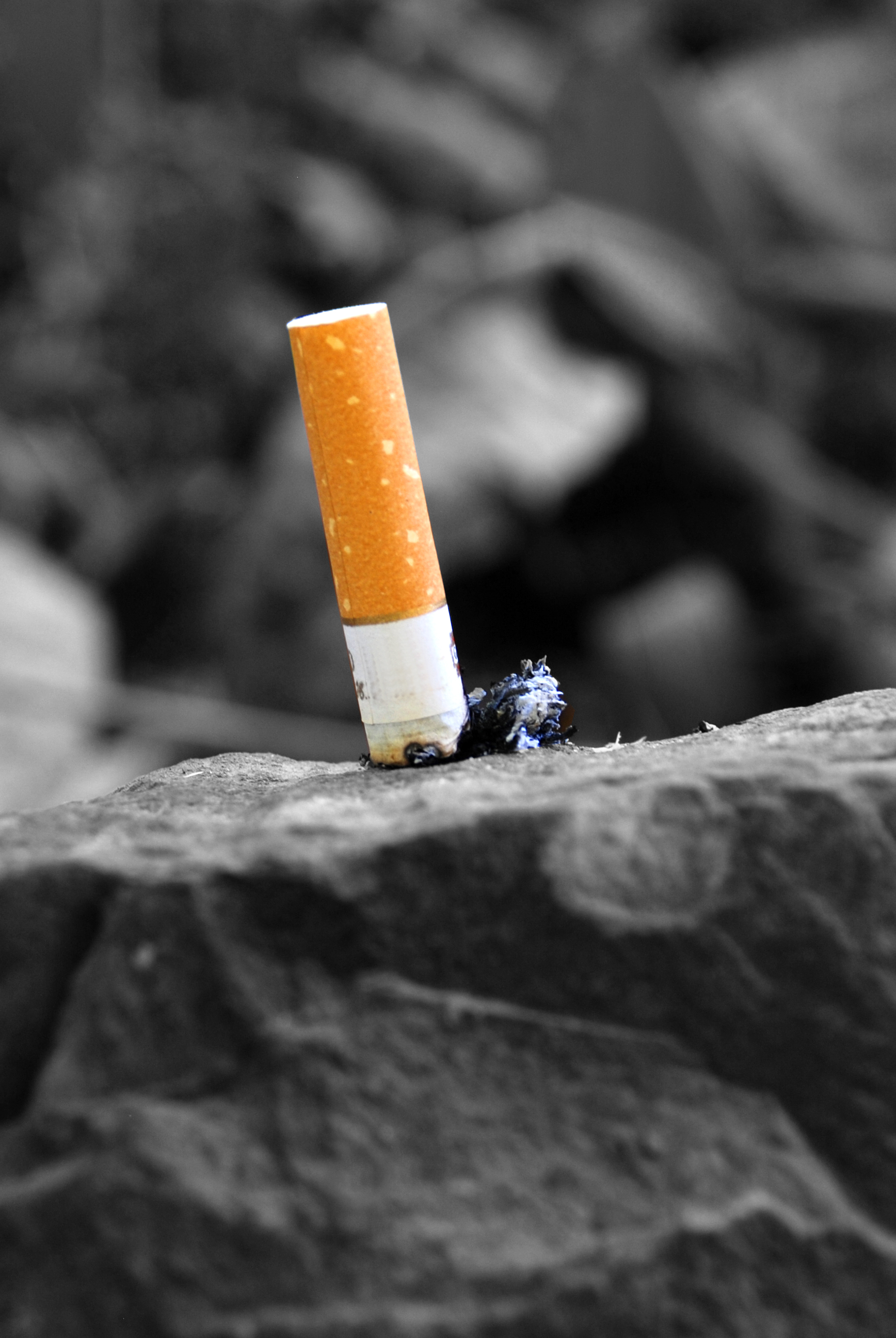 Cigarette butts are damaging our plants